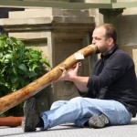 didgeridoo-onlineshop