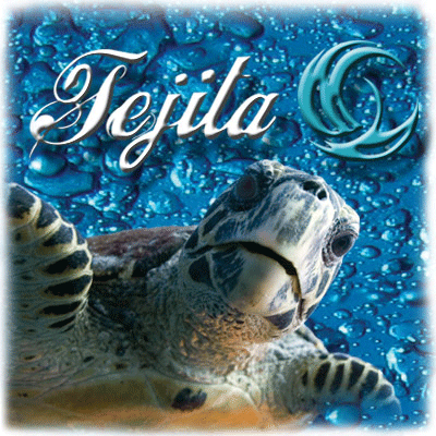 Tejita Schmuckwerkstatt